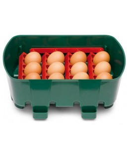 Automatic Poultry Incubator (River system ET24)