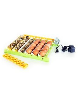 Professional Full Automatic Incubator 180 egg